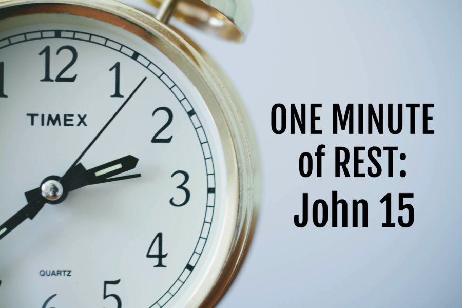 One Minute of Rest: John 15